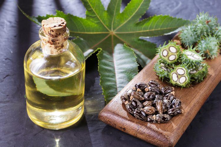 Ricínový olej na vlasy i mihalnice. Kompletné účinky a6c98f922af