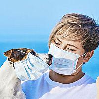 Koronavírus: Môžu nákazu dostať a šíriť domáci miláčikovia?