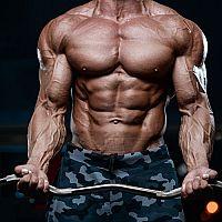 Legálne náhrady steroidov - anabolizéry na prírodnej báze bez negatívnych androgénnych účinkov