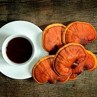 Káva Reishi – red reishi, black coffe, dxn. Diskusia otvorená