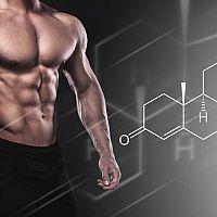 Testosterón - ako zistiť hladinu a aké hodnoty sú dobré