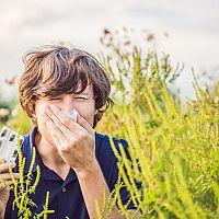 Voľnopredajné lieky na alergiu a homeopatiká