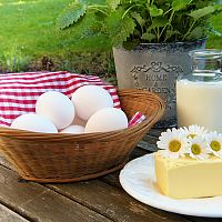 Bielkovinová diéta : V čom spočíva? Čo môžete jesť?