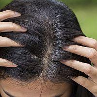 Alpecin, Reparex alebo Šedistop? Ktorý je najlepší proti šediveniu vlasov