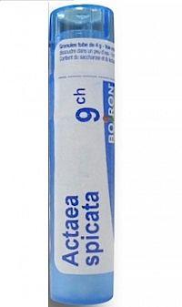 ACTAEA SPICATA GRA HOM CH9 4 g