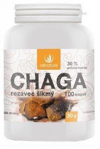 Allnature Chaga kapsle 100 cps