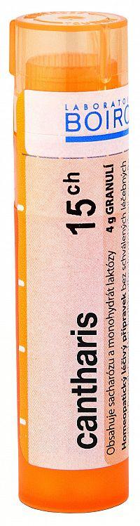 Cantharis CH15 granule 4g