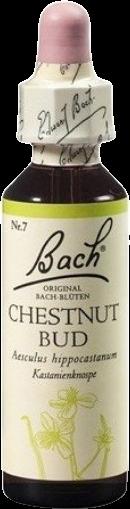 Dr. Bach Esence Chestnut Bud - Gaštan konský 20ml