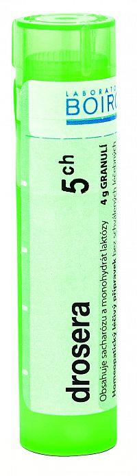 Drosera CH5 granule 4g