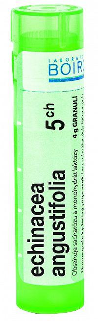 Echinacea Angustifolia CH5 granule 4g