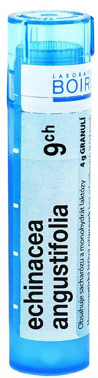 Echinacea Angustifolia CH9 granule 4g