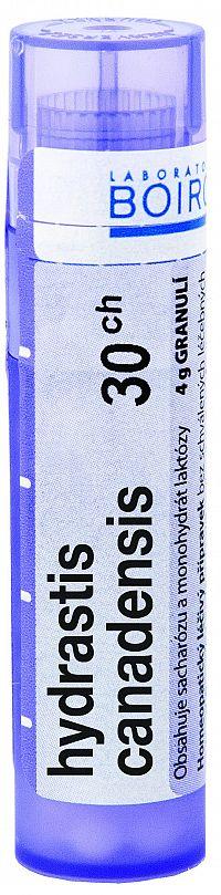 Hydrastis Canadensis CH30 granule 4g