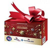 Kolagén 4000 prášok vo vrecúškach 30 ks + darček Cartilaga 800 30 tabliet Vianočné balenie