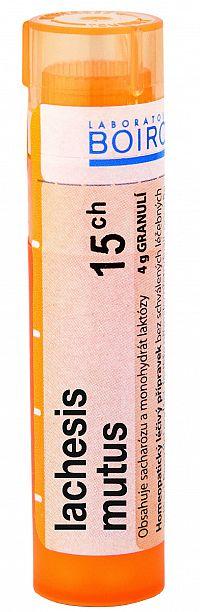 Lachesis Mutus CH15 granule 4g