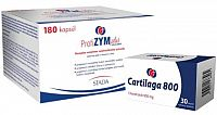 ProfiZYM Plus + darček cps 180 ks + Cartilaga 800 mg tbl 30 ks zadarmo, 1x1 set