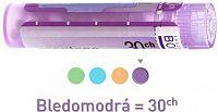 SPIGELIA ANTHELMIA GRA HOM CH30 1x4 g