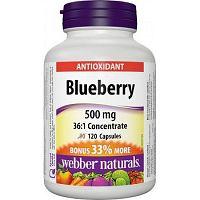 Webber Naturals Čučoriedka Bonus 500 mg 36:1 120tbl