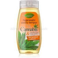 Bione Cosmetics Cannabis regeneračný šampón 260 ml