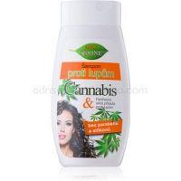 Bione Cosmetics Cannabis šampón proti lupinám  260 ml