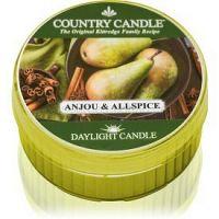 Country Candle Anjou & Allspice čajová sviečka 42 g