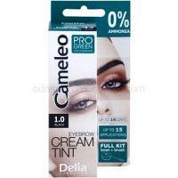 Delia Cosmetics Cameleo Pro Green farba na obočie bez amoniaku odtieň 1.0 Black 15 ml
