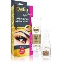 Delia Cosmetics Eyebrow Expert farba na obočie a mihalnice s aktivátorom odtieň 1.1. Graphite 2 x 15 ml