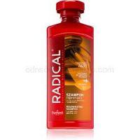 Farmona Radical Dry & Brittle Hair regeneračný šampón  400 ml