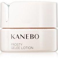 Kanebo Skincare osviežujúci pleťový gél s chladivým účinkom 40 ml