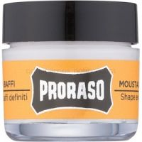 Proraso Wood and Spice vosk na bradu 15 ml
