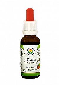Salvia Paradise Haritaki - Vrcholák AF tinktura 50 ml