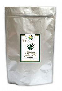 Salvia Paradise Konopný proteín 50% 250 g