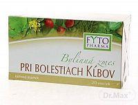 FYTO Bylinná zmes PRI BOLESTIACH KĹBOV 20x1,25 g (25 g)