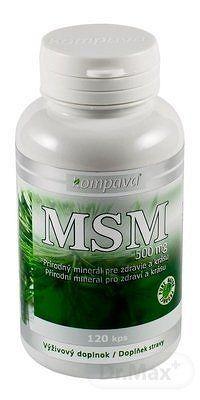 Kompava MSM 500 mg cps 1x120 ks