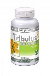 kompava TRIBULUS TERRESTRIS cps 1x120 ks