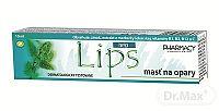 LIPS HELP masť na opary 1x10 ml