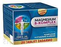 Magnesium B-komplex Glenmark tbl 100+20 ks
