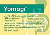 Yomogi cps dur 250 mg (blis.PVC/PE/PVDC/Al) 1x10 ks