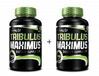 1+1 Zadarmo: Tribulus Maximus - Biotech USA