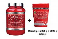 100% Whey Protein Professional od Scitec Nutrition