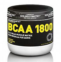 BCAA 1800 - Sizeandsymmetry
