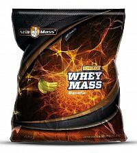 Excelent Whey Mass - Still Mass  4000 g Chocolate
