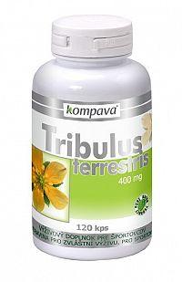 Tribulus terrestris - Kompava