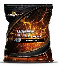 Whey 6:3:1 Peptid - Still Mass 2500 g Chocolate