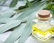 Eukalyptový olej pre deti a v tehotenstve. Výborný je na naparovanie
