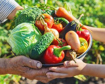 Diéta pri DNE, cukrovke a vysokom cholesterole