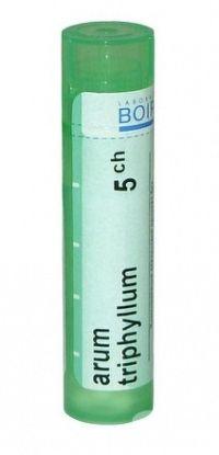 ARUM TRIPHYLLUM GRA HOM CH5 1x4 g