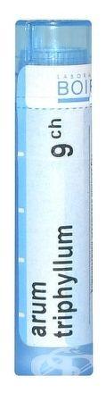 ARUM TRIPHYLLUM GRA HOM CH9 1x4 g
