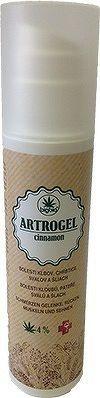 BigBio ARTROGEL cinnamon masážny bylinný gél, dávkovač 1x200 ml
