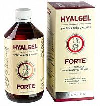 HYALGEL FORTE sirup s príchuťou pomaranča 1x500 ml