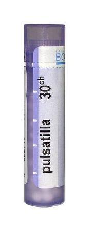 PULSATILLA GRA HOM CH30 1x4 g